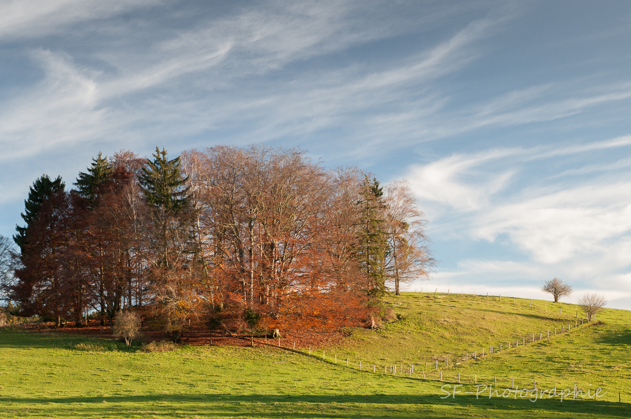 2014-11-16_16-49_0073_Andechs