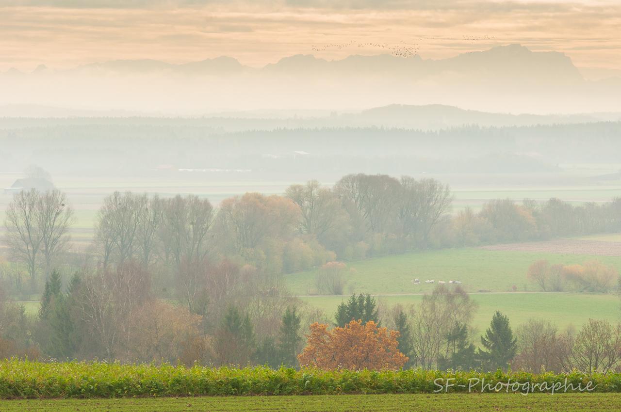 2014-11-22_13-06_0059_Alling_Germansberg
