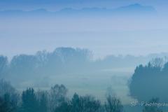 2014-01-01_15-46_0039_Alling_Moos