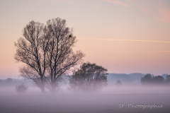 2015-10-26_16-21_0091_Alling_Twilight